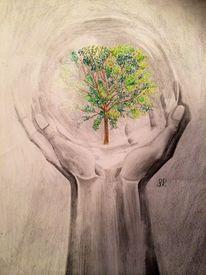 Grün, Klimaveränderung, Baum, Leben