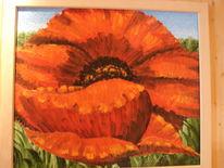 Blumen, Sommer, Mohn, Malerei