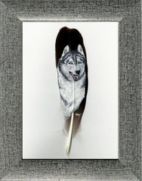 Husky, Acrylmalerei, Feder, Pastellmalerei