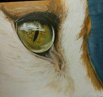 Augen, Katze, Malerei