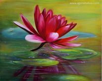 Wasser, Pflanzen, Blumen, Natur