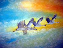 Vogel, Kranich, Himmel, Vogelzug