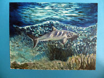 Hai, Riff, Unterwasser, Malerei
