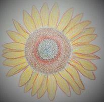 Gelb, Sonnenblumen, Blumen, Zeichnungen
