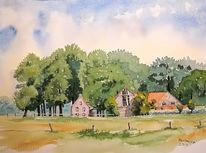 Landschaft, Münsterland, Wald, Schatten