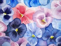 Blüte, Stiefmütterchen, Blumen, Aquarellmalerei