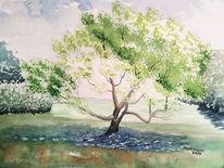 Baum, Stadtpark, Aquarell
