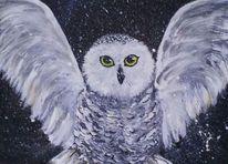 Eule, Schnee, Fliegen, Malerei