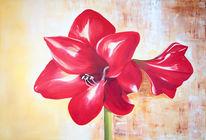 Amaryllies blume rot, Blumen, Ölmalerei, Malerei