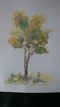 Baum, Natur, Licht, Aquarell