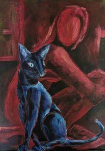 Tiere, Blau, Katze, Rot