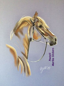 Portrait, Pony, Pferdeliebe, Pastellmalerei