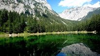 Wasser, See, Berge, Grüner see