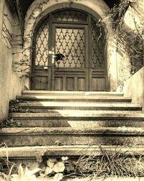 Haus, Natur, Gesellschaft, Fotografie