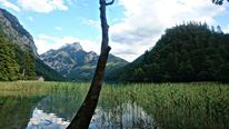 Natur, See, Fotografie