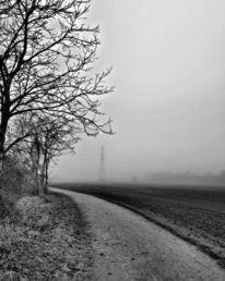 Natur, Weg, Seele, Fotografie