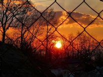 Sonnenuntergang, Zaun, Natur, Fotografie