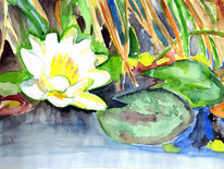 Gelb, Seerose weiß, Grün, Aquarell