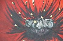 Klatschmohn, Rot, Natur, Acrylmalerei