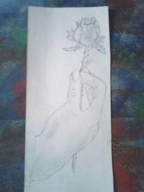 Rose, Pflanzen, Hand, Zeichnungen