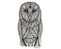 Schleiereule, Barnowl, Figural, Flügel