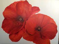 Natur, Blumen, Ölmalerei, Feldblumen