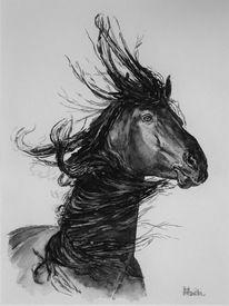 Mähne, Wild, Pferdekopf, Pferde