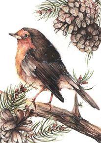 Zweig, Aquarellmalerei, Rotkehlchen, Singvogel