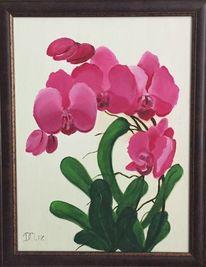Pink, Grün, Blumen, Orchidee
