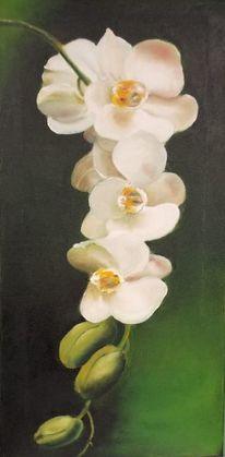 Orchidee, Ölmalerei, Grün, Blumen