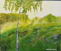 Gras, Büro, Landschaft, Birken
