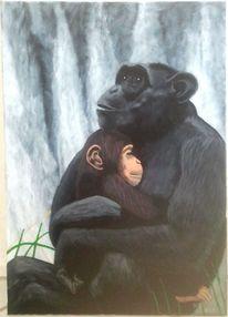 Malerei, Wasserfall, Schimpanse, Natur