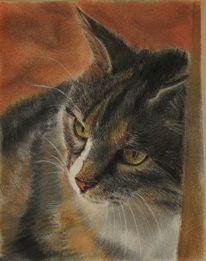 Katze, Tiere, Malerei,