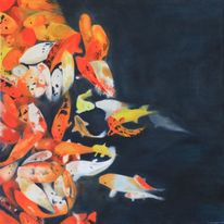 Orange, Fisch, Blau, Koi