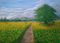 Sonnenblumen, Wanderweg, Baum, Wolken