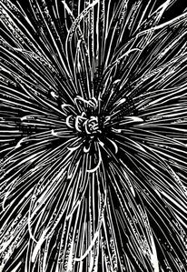 Blumen, Nebenbeigekritzel, Linolschnitt, Druckgrafik