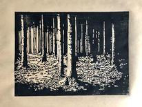 Licht, Nebenbeigekritzel, Lichtspiel, Wald