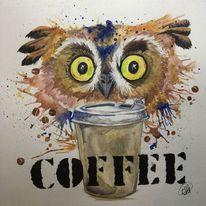 Nachttier, Tiere, Eule, Kaffe