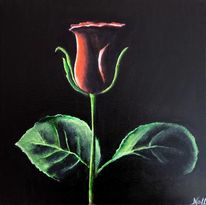 Rot, Grün, Rose, Natur