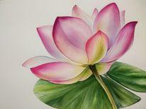 Malerei, Linie, Botanische illustration lilie, Botanik