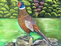 Vogel, Pastellmalerei, Bunt, Fasan