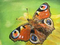 Flügel, Acrylmalerei, Natur, Schmetterling