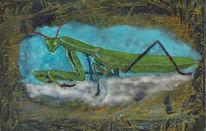 Gottesanbeterin, Insekten, Enkaustik, Grün