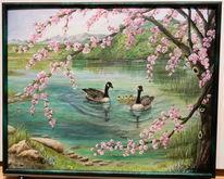 See, Blüte, Gänse, Frühling