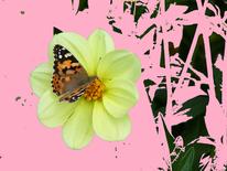 Hunger, Schmetterling, Landeplatz, Digitale kunst
