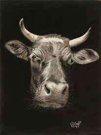 Pastellmalerei, Kuh, Tierportrait, Rind