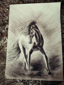Zeichnung, Liebe, Pferde, Malerei