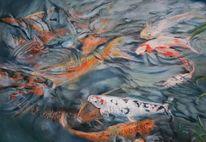 Fische, Wasser, Teich, Koi