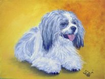 Hund, Ölmalerei, Balu, Malerei