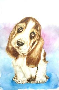 Tierportrait, Aquarellmalerei, Hund, Hundeportrait